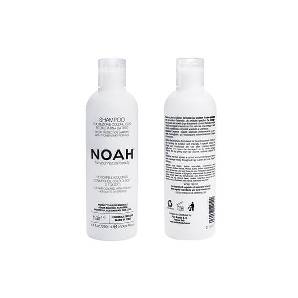 Noah 1.6 web
