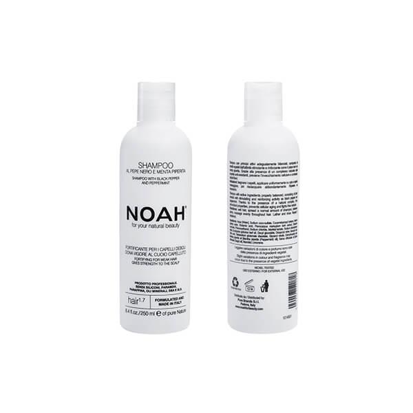 Noah 1.7 web