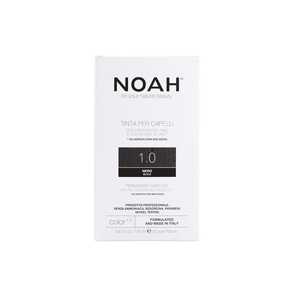 Noah Color 1.0 Web