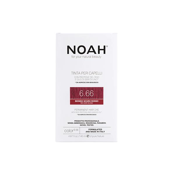 Noah Color 6.66 Web
