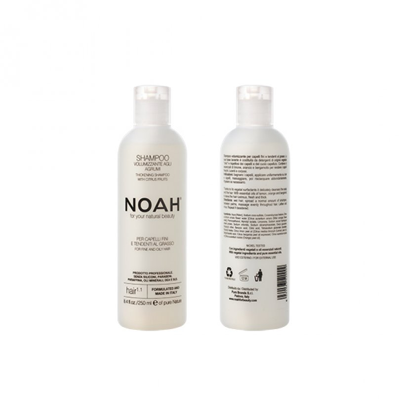 Noah-1.1-web.jpg