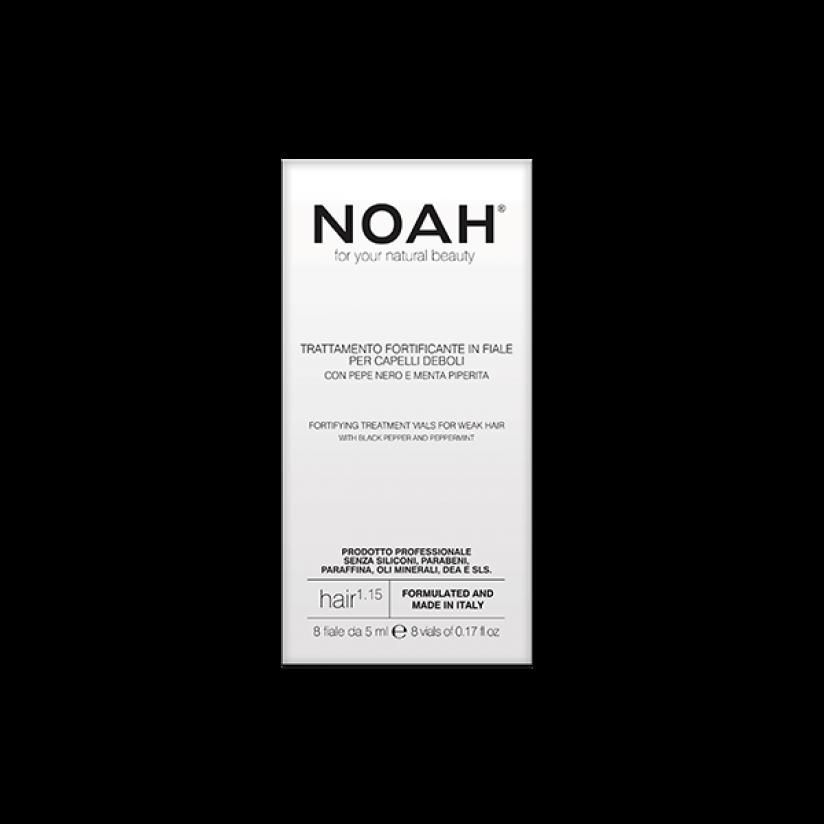 Noah-1.15-web.png