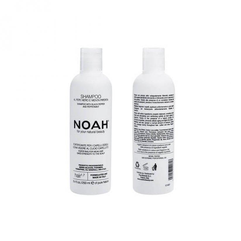 Noah-1.7-web.jpg