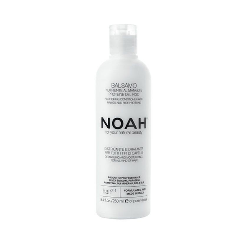Noah-2.1-web.jpg