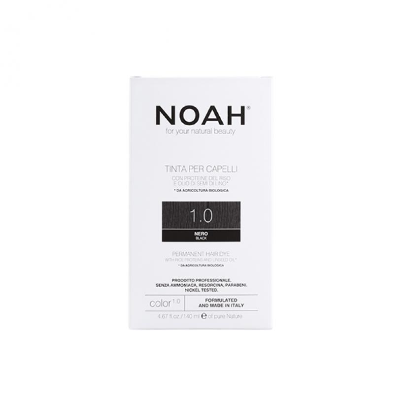 Noah-Color-1.0-Web.png
