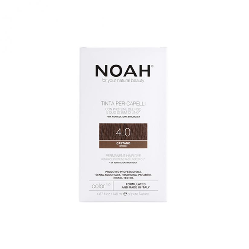 Noah-Color-4.0-Web.png