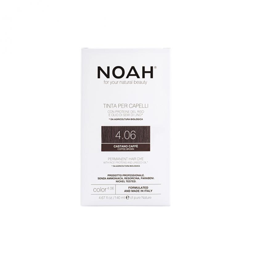 Noah-Color-4.06-Web.png