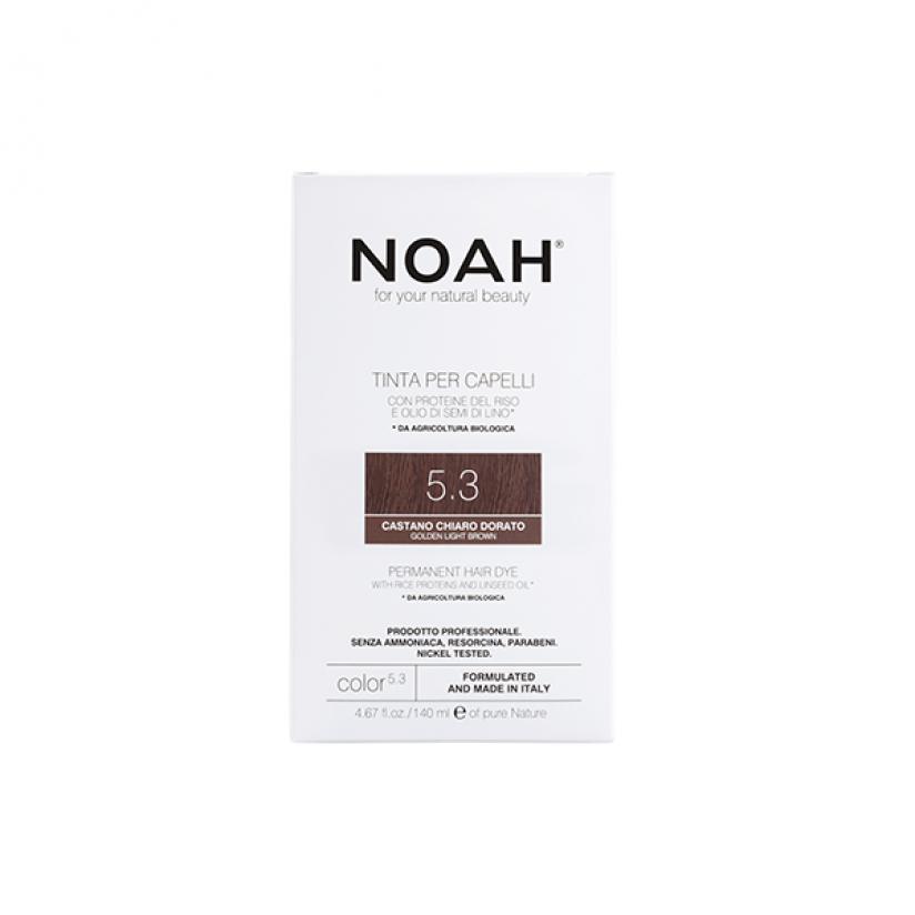 Noah-Color-5.3-Web.png