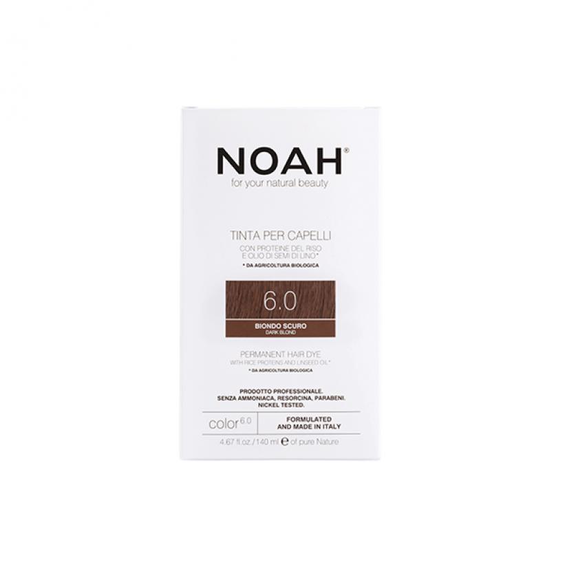 Noah-Color-6.0-Web.png