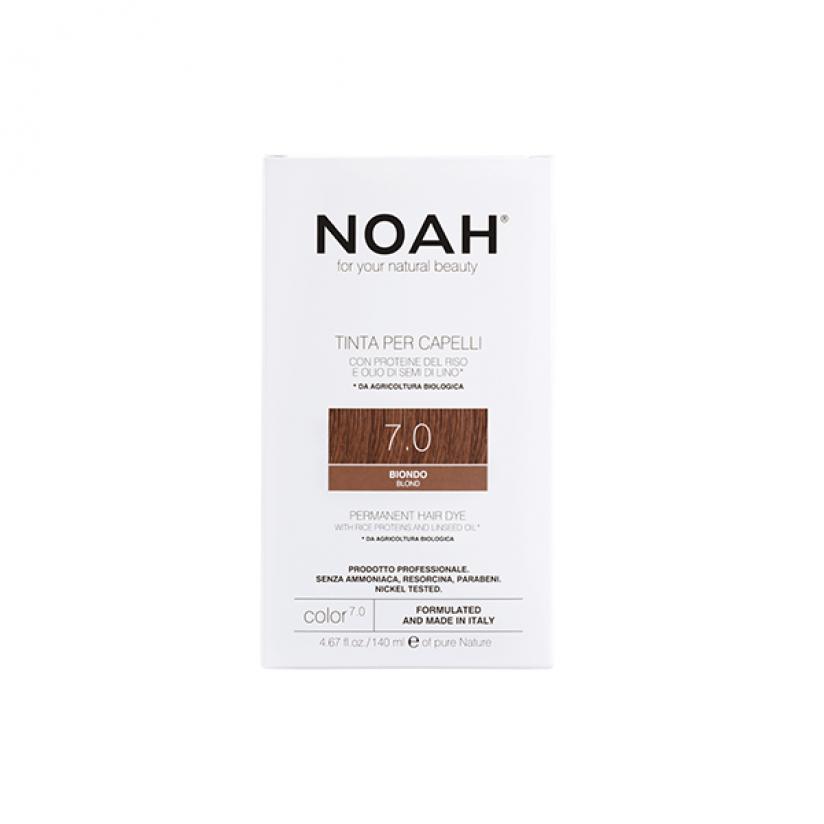 Noah-Color-7.0-Web.png