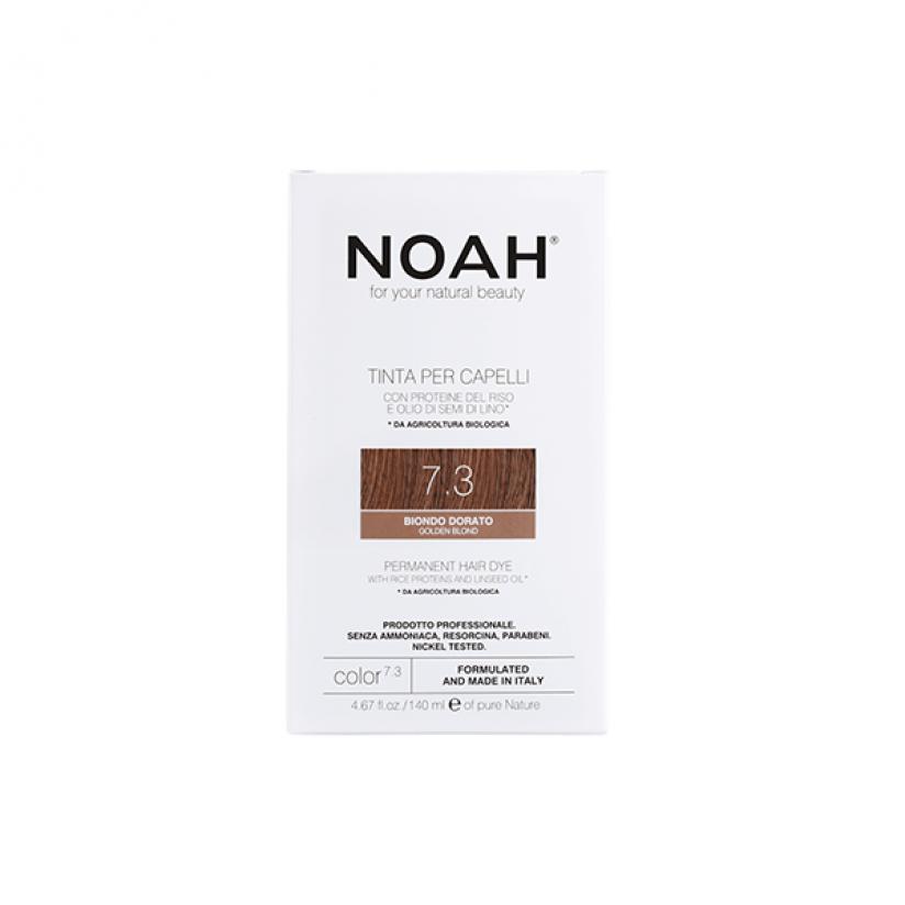 Noah-Color-7.3-web.png
